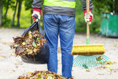 Man with brush and rake collects leaves — Stock Photo