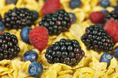 Blackberries, Raspberries, Blueberries with cornflake — Stock Photo