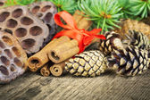 Cone with decorations,cinnamon and fir branches — Stock Photo