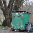 Men near crowded waste containers episode 7 — Stock Video