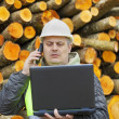 Forest employee with PC near stacks of logs — Stock Photo