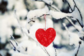 Textile heart hanged on a snow-covered forest bush — Stock Photo