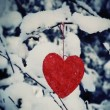 Textile heart hanged on a snow-covered forest bush — Stock Video