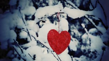 Textile heart hanged on a snow-covered forest bush — Vídeo de stock