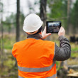 Forest Officer with tablet PC in destroyed forest — Stock Photo