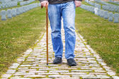 Man with walking stick in cemetery — Stock Photo