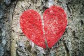 Broken red heart — Stock Photo