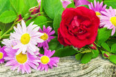 Rose with a variety of flowers on wooden board — Stock Photo