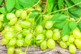 Green grapes with leaves — Stock Photo