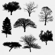 Collection of tree silhouettes — Stock Vector