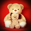 Two teddy bears sitting together — Stock Photo