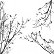 Vector birds on tree background — Stockvectorbeeld