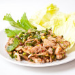 Thai food call NAMTOK MOO — Stock Photo