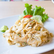 Stir fried rice noodle with chicken — Foto Stock