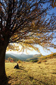 Lonely beautiful autumn tree and a man — Stock Photo