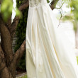 Wedding dress hanging on a tree — Stock Photo