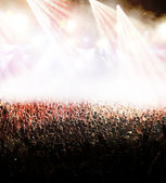 Crowd at concert — Stock Photo