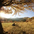 图库照片: Colorful autumn tree at sunset with womsitting and contemplating nature