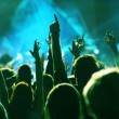 Crowd at concert — Stockfoto