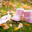 Baby girl boots in autumn park — Stock Photo