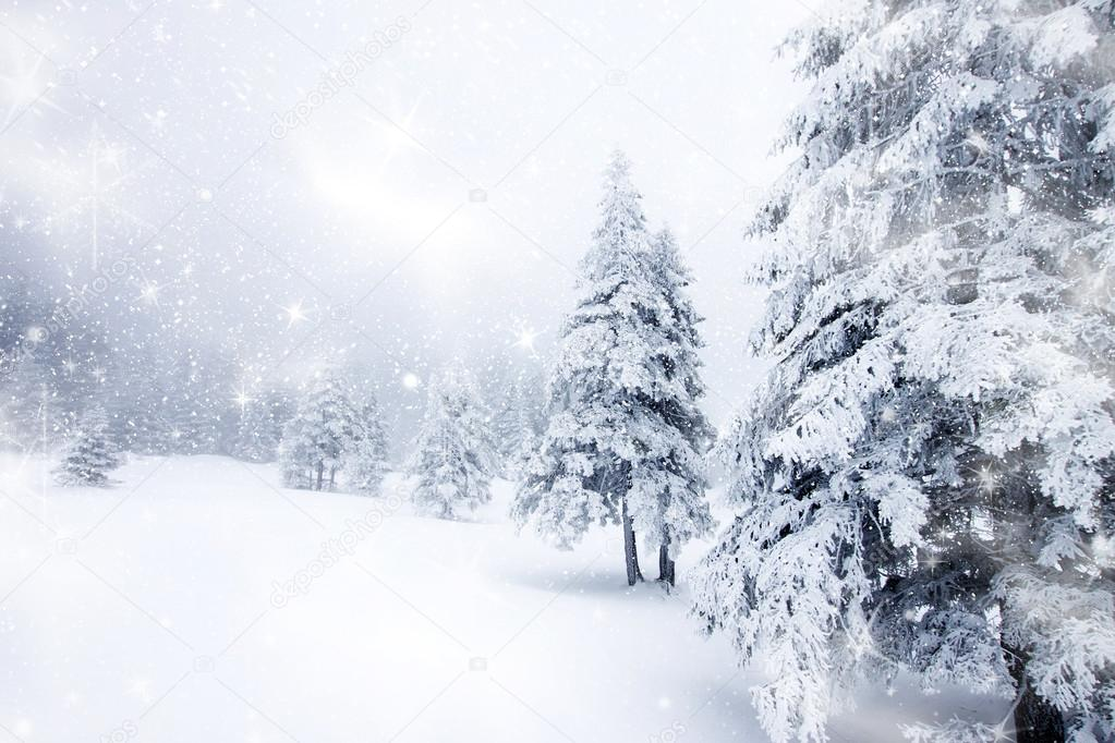 christmas background with snowy firs � stock photo