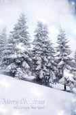 Kerstmis achtergrond met besneeuwde sparren — Stockfoto