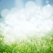 Vintage spring background — Stock Photo