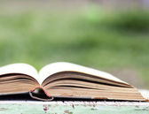 Open book on green background — Stock Photo