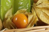 Physalis fruit healthy — Stock Photo
