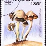 Benin Postage Stamp Psilocybin Psychedelic Mushroom Psilocybe Ca — Stock Photo #7897706