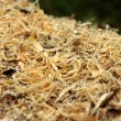 Wooden sawdust backgrounds. — Stock Photo #33422885
