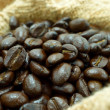 Arabica coffee beans. — Stock Photo
