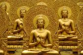 Meditação de Buda dourado. — Fotografia Stock