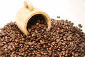 Coffee beans on the white background. — Stock Photo