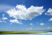 Blue sky with cloud — Stock Photo