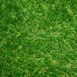 Artificial Grass Field Top View Texture — Stock Photo