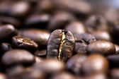 Roasted coffee beans. — Stock Photo