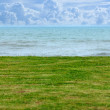 Stock Photo: Seaside lawn.
