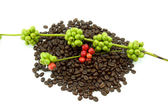 Raw and roasted coffee beans on a white background. — Stock Photo