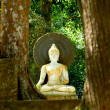 White Buddha statues. Meditate and relax. — Stock Photo #36701233