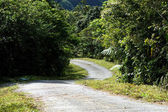 Empty curved road — Stock Photo