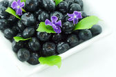 Blueberries with leaves on white background — Stock Photo