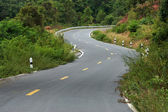 Empty curved road to the mountain. — Stock Photo