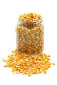 Corn seeds for cooking popcorn — Stock Photo