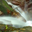 Beautiful of small waterfall flowing over the rock  in the fores — Stock Photo