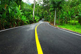Winding Road in Thailand — Stock Photo