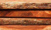 Wood for industrial applications. — Stock Photo