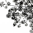 Black leaves on white background. — Stock Photo