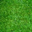 Artificial Grass Field Top View Texture — Stock Photo #36916205