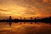 Black silhouette against the sky at sunset. — Foto de Stock